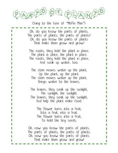 This rhyme introduces children to the parts of the plants. When going to the original site you are able to find other cool activities that you can incorporate into your lesson such as taking white carnations and putting them into water with food colouring and watching the flower change colours. Very engaging and hands on for the children.