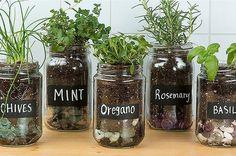 https://i.pinimg.com/236x/48/03/b2/4803b2c3a39aa8a7989dc03d99148194--indoor-herbs-indoor-gardening.jpg