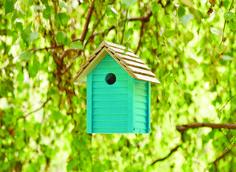 Summmer Sky - Ronseal Garden Paint