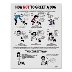 Great educational poster by Lili Chin for you dog lovers!