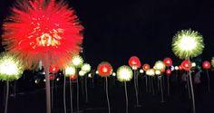 Festival GLOW, arte, luz y arquitectura