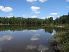 This is Spring Lake in the heart of the Hiawatha National Forest. One of hundreds of lakes waiting to be explored! Hiawatha National Forest, Spring Lake, Upper Peninsula, John Muir, Picnic Area, Horseback Riding, Acre, Trail, National Parks