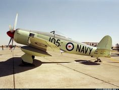 Hawker Sea Fury FB11 aircraft picture