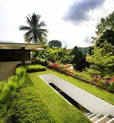 toit végétal, joli jardin sur toit