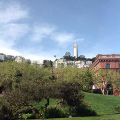 Day 53:  Levi's Plaza With Coit Tower