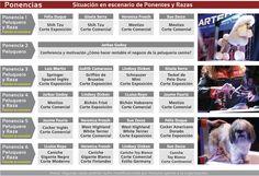 Jornadas Artero: conoce la ubicación de cada ponente en el escenario #peluqueriacanina