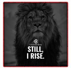 Still I rise. Wisdom Quotes, Qoutes, Quotations, Quotes To Live By, Positive Quotes, Motivational Quotes, Inspirational Quotes, Badass Quotes, Best Quotes