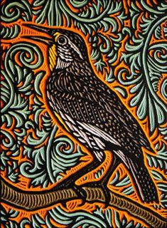 meadowlark by Lisa Brawn, via Flickr