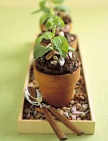 "chocolate ""potted plants"" cupcakes...using mint sprigs to look like plants and also mini planting pots...Very cute!"