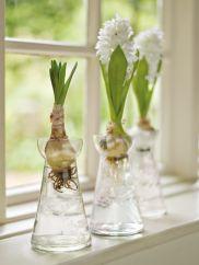 Three Hyacinth Bulb Vases