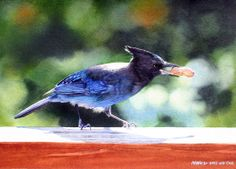 Neat contrast with the background and the bird.  Nut Snatcher (watercolor by Marilyn Wear)