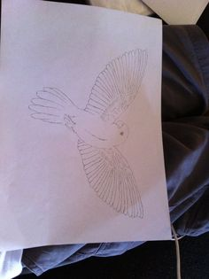 Another bird drawing