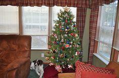 tv room tree