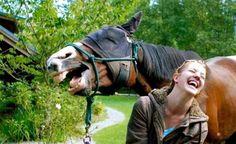 Flagrantes animais: Fotos incríveis tiradas no momento certo