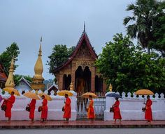 """@live_life_love_travel on Instagram: """"Luang Prabang's sacred giving alms ceremony. Takes place every morning at 5:45. There is an…"""" Live Life Love, Luang Prabang, Us Travel, Adventure Travel, Places, Instagram, Lugares"""