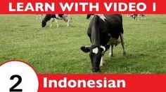 playlist | Learn Indonesian With Video by Learn Indonesian with IndonesianPod101.com