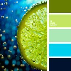 The color palette №1494 Bright, but not aggressively distracting gamma connects with one hand Prussian blue and sky blue, the other - olive and pear, and between them - a border of pale turquoise.