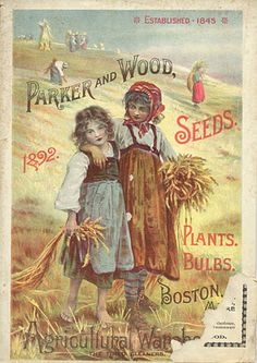 Poster Vintage Advertising Art Print Seed Catalogue Cover Childs Misc 1