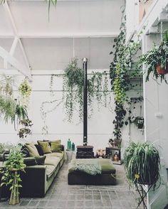 "59 Likes, 3 Comments - Micmac (@micmac___) on Instagram: ""행잉 가든 #interior#botanical #그린#화분 #인테리어소품 #화분인테리어…"""