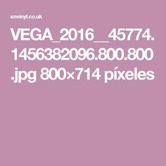 VEGA_2016__45774.1456382096.800.800.jpg 800×714 píxeles