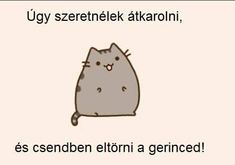 Pusheen Cat, Funny Moments, Funny Photos, Comedy, Hilarious, Jokes, Writing, Asd, Sayings