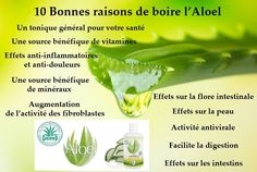 Aloe Vera, Frederic M, Gmail, Bio, Cure, Portugal, Herbs, Makeup, Products