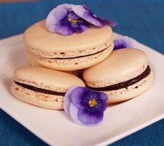 Macarons with Chocolate Ganache