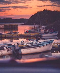 Sunset at the dock (Newfoundland and Labrador) by Gil Tamin (@giltaminphotog) on Instagram Newfoundland And Labrador, Adventure Travel, Landscape Photography, Sunrise, Canada, Places, Nature, Pride, Beautiful