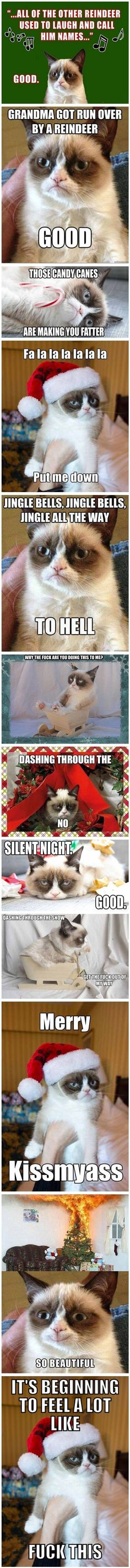 Grumpy Cat At Christmas hahahaha