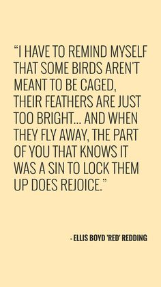 Shawshank Redemption. Epic movie. 'Some birds aren't meant to be caged'