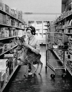 1958 - Audrey Hepburn fa la spesa con Ip, il cucciolo di cervo che l'attrice teneva in casa Guarda anche i più strani animali domestici