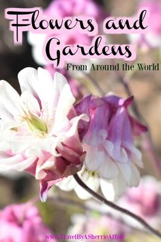 Beautiful places with Beautiful flowers and Gardens around the world: A collaboration of gardens that are famous and some not so famous.  Flowers that are planted and some that grow wild.  Beautiful and stunning photography of these places that will inspire you to see them for yourself! #flowers #gardens #worldtravel #travel #flowersandgardens