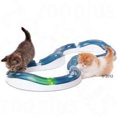 Catit Design Senses Super Roller Circuit, Blue, 8 x x Inches Interactive Cat Toys, Cat Scratcher, Cat Supplies, Pet Life, Circuit, Cats And Kittens, Cute Cats, Your Pet, Cat Lovers