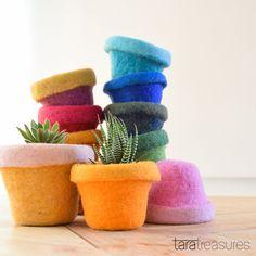 Pot cozies to keep your succulent plants warm. #taratreasures #succulents