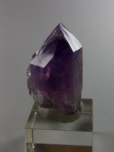 Quartz var.Amethyst - Mörchnerkar, Mörchner area, Zemmgrund, Zillertal, North Tyrol, Tyrol, Austria Size: 4.0 cm My Favorite Color, My Favorite Things, Gems And Minerals, Amethyst, Quartz, Vase, Gemstones, Purple, Rocks