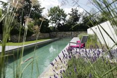 Wasserspiele & Teiche › Zinsser Gartengestaltung, Schwimmteiche und Swimmingpools