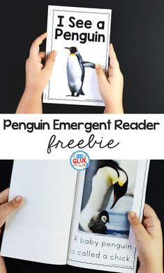 Penguin Emergent Reader – A Dab of Glue Will do This Penguin Emergent Reader will help your students to build their print and phonological awareness in an enjoyable way. Preschool Lessons, Kindergarten Reading, Kindergarten Classroom, Kindergarten Activities, Learning Activities, Winter Activities, Kindergarten Freebies, Preschool Winter, Teaching Ideas