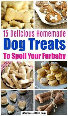 15 Easy Homemade Dog Treats Homade Dog Treats, Gourmet Dog Treats, Puppy Treats, Diy Dog Treats, Homemade Dog Food, Healthy Dog Treats, Homemade Dog Biscuits, Homemade Dog Cookies, Dog Biscuit Recipes