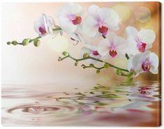 """Résultat de recherche d'images pour """"tableau sur toile orchidées"""""""