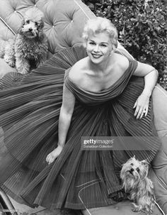 Eva Gabor with poodle and yorkie. I have a poodle and yorkie. Who knew :) ? Old Hollywood Glamour, Hollywood Stars, Classic Hollywood, Vintage Hollywood, Eva Gabor, Poodles, Yorkie Poodle, Poodle Puppies, Divas