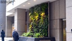 Florafelt Vertical Garden Planters and Living Wall Systems