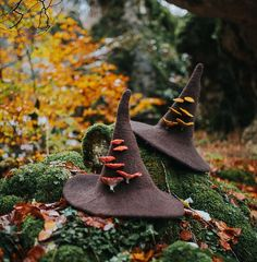 Witch hat with mushrooms amanita muscaria forest wizard hat felted hat from wool Halloween costume witch costume larp hat cosplay Felt Witch Hat, Felt Hat, Wool Felt, Witch Hats, Fall Halloween, Halloween Costumes, Halloween Prop, Halloween Witches, Happy Halloween