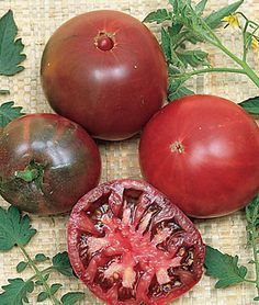 Sweet and Rich Flavor Cherokee Purple Heirloom Tomato--35 seeds--Good Yields