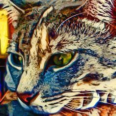Aliexpress.com : Buy Diamond Painting Cross Stitch Kits animal 5D Diy Diamond Embroidery Home Decoration Crafts Diamond Painting cat from Reliable craft christmas tree decorations suppliers on Tranquila Diy Diamond Painting&Embroidery Home