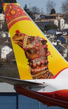 Air India Express Boeing B737-800 (Camel) Airplane Decor, Airplane Window, Commercial Plane, Commercial Aircraft, Civil Aviation, Aviation Art, Air India Express, Airplane Painting, India Poster