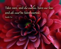 Isaiah 7:4  kjv.....And say unto him, Take heed, and be quiet; fear not, neither be fainthearted