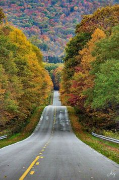 This is where my hubby comes from Pocahontas County in West Virginia by Rick Burgess Photography Beautiful Roads, Beautiful Places, Beautiful Scenery, Take Me Home, The Great Outdoors, Bergen, Paths, Places To Visit, Around The Worlds