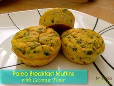 Paleo Breakfast Muffins with Coconut Flour (Dairy-free Options) - Nature's Nurture