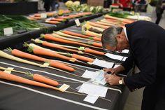 Een jurylid van de Harrogate Autumn Flower Show in Engeland maakt een aantekening.
