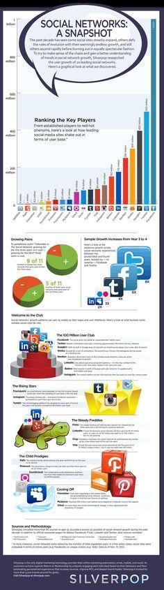 Una bella immagine di sintesi sui numeri dei social network aggiornata al 14 Novembre.